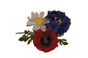 Blumen Tuff für Dachauer